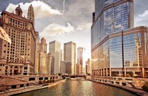Chicago Background Check